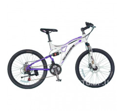 Велосипед Winner Twister Disk 24