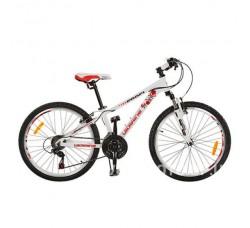 Велосипед PROFI  G24A315-M-UKR-2 24