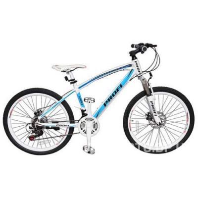 Велосипед Profi 24 Expert бирюзово-белый