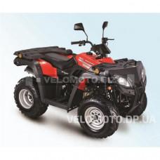 Квадроцикл SkyBike Expert 250