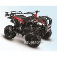 Квадроцикл SkyBike Triton 150
