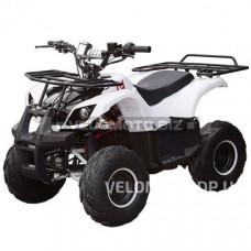 Квадроцикл HB-EATV 1000D-1  (электрический)