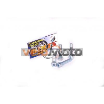Болты крышки вариатора   4T GY6 50   (шестигранный шлиц, 4шт)