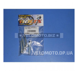 Болты крышки вариатора   Suzuki LETS   (крестообразный шлиц, 4шт)