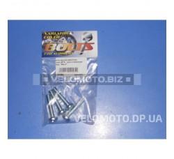 Болты крышки вариатора   Suzuki LETS   (шестигранный шлиц, 4шт)